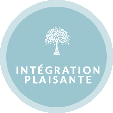 Icone-3-Intégration-plaisante-2-1